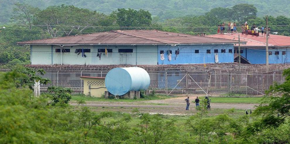 Rehabilitarán granja agropecuaria en cárcel