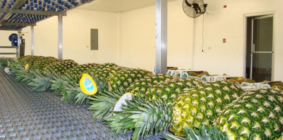 La logística en Panamá y su impacto en la región