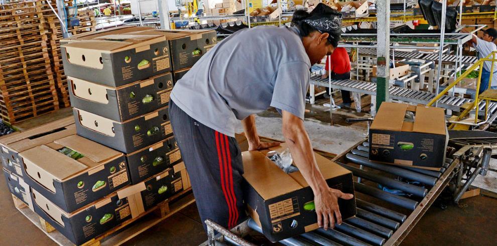 Caen exportaciones de bienes en los primeros tres meses