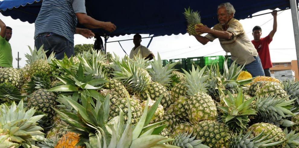 Las exportaciones agropecuarias siguen sin rumbo