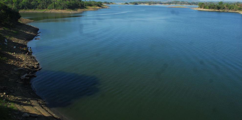 Madera sumergida en lagos de Panamá, un tesoro comercial