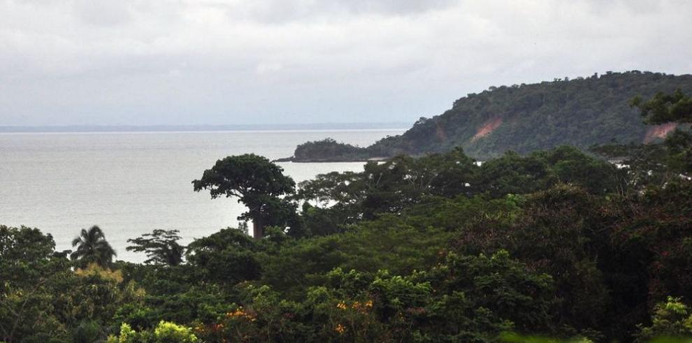 Pagarán a indígenas por cuidar los bosques