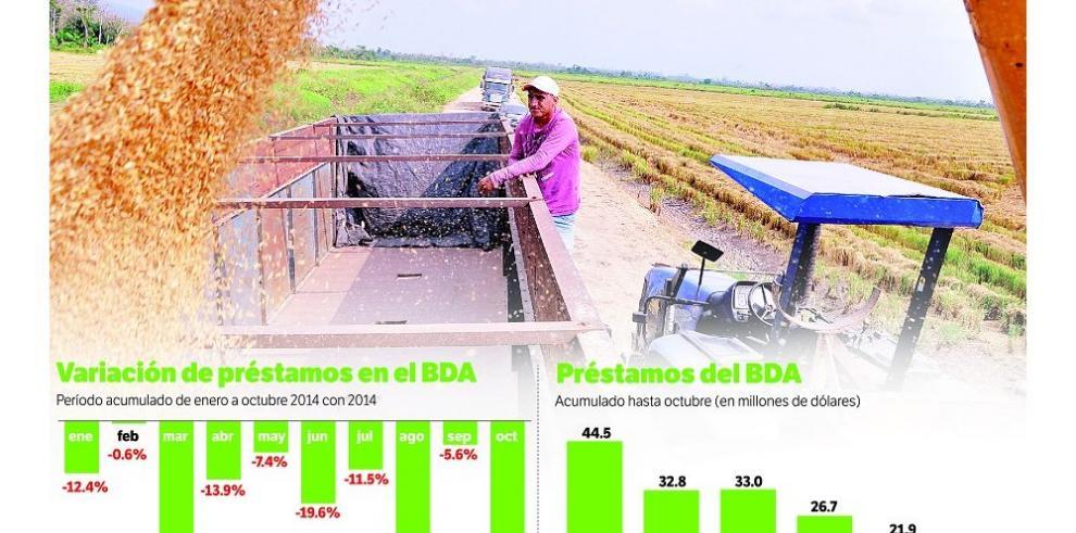 Préstamos agropecuarios caen iniciando gobierno de Varela