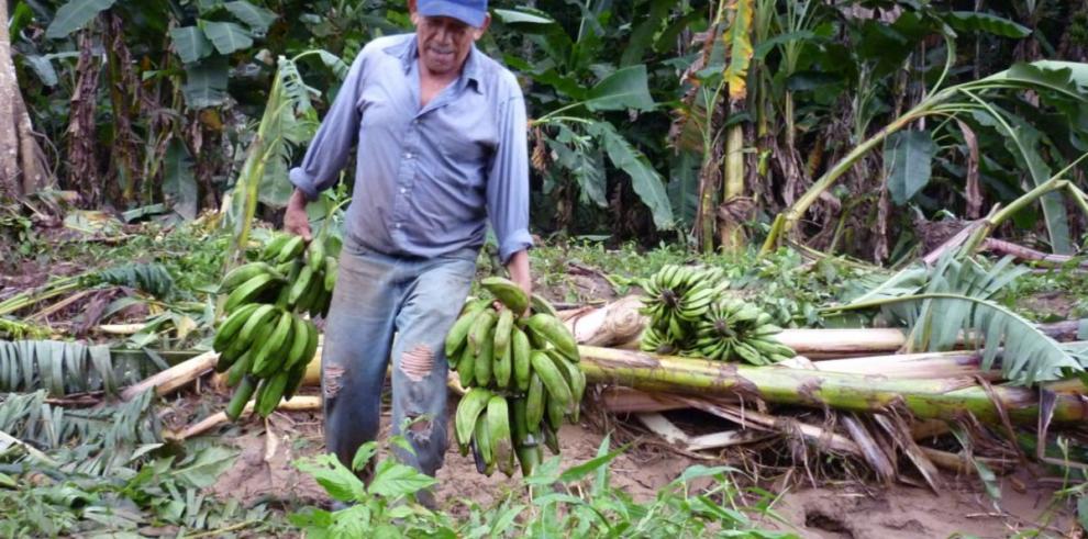 Lluvias 2014 podrían culminar antes de lo previsto en Panamá