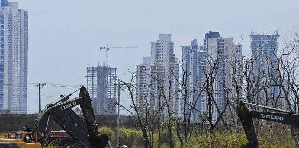 ONU: ya se perdió el 25% de los manglares
