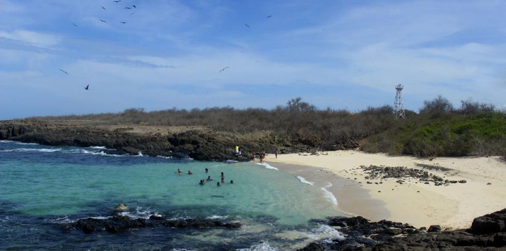 ONG ambientalistas, en alerta por creación de una fundación