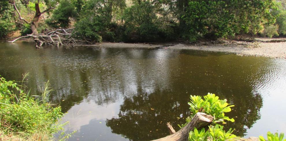 Ríos de Panamá Oeste aumentan su caudal