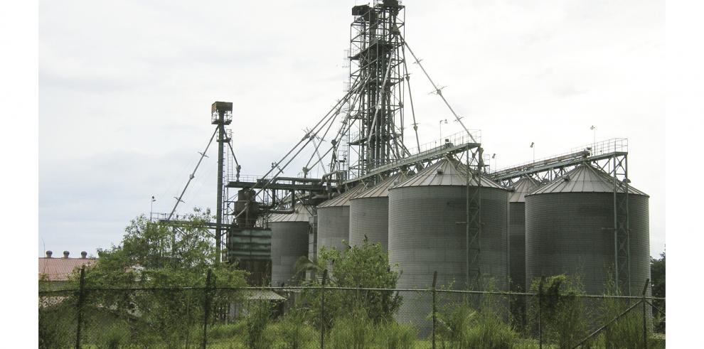 El_IMA_preve_construir_dos_silos_en_Panama_Este_y_Tonosi-0