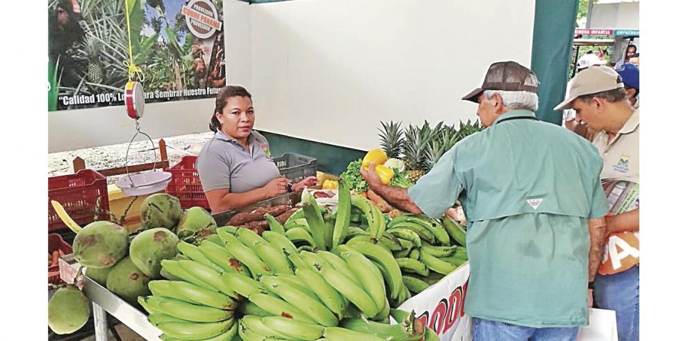 Productores_agricolas_facturan_$1.3_millones_en_ventas_a_Cobre_Panama-0
