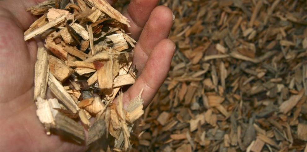 Biomasa madera