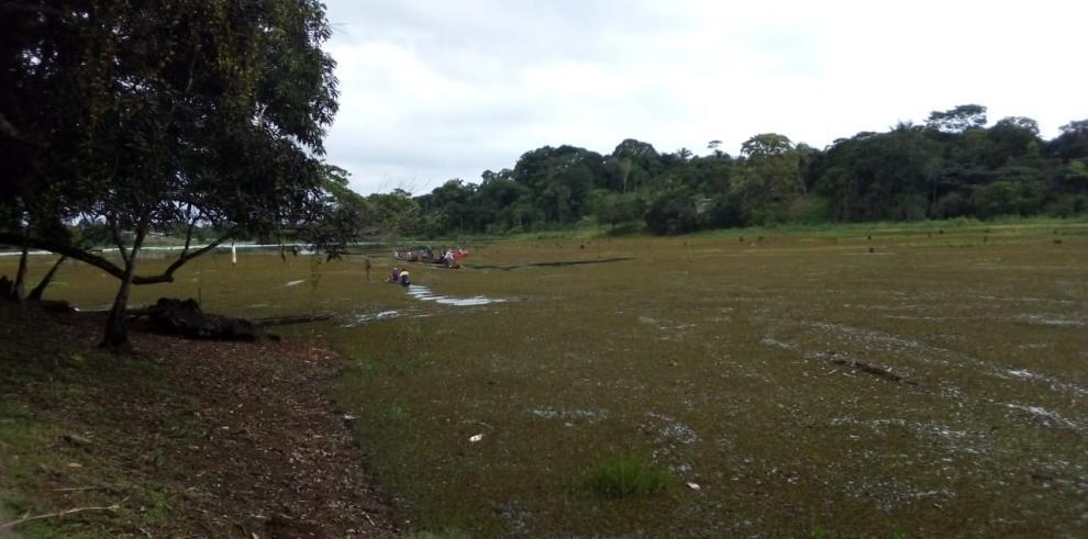 Localidad de El Congal, Colón, lago Gatún