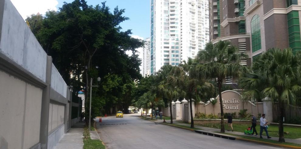 Inspeccionan árboles de ficus que han ocasionado daños a edificios