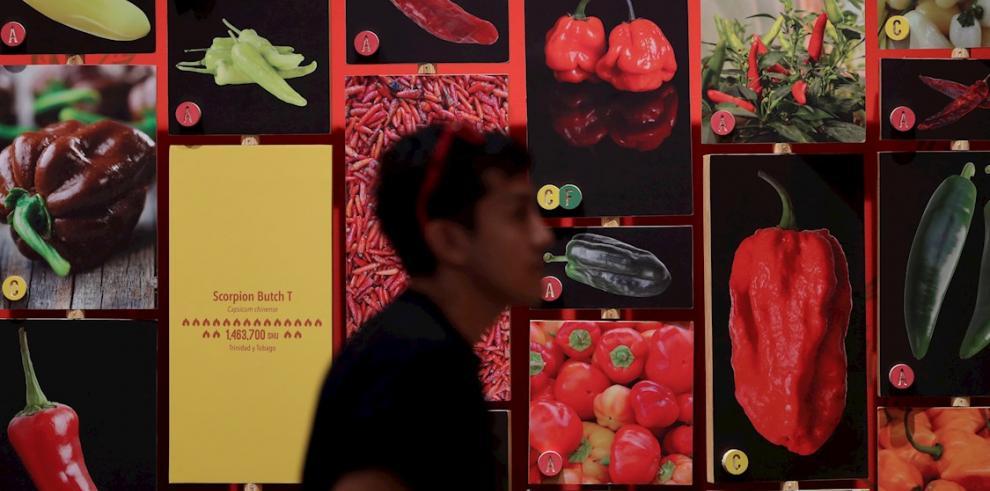 Asistentes observan la exhibición Picante, el 27 de diciembre de 2019, en el Biomuseo de Ciudad de Panamá (Panamá).