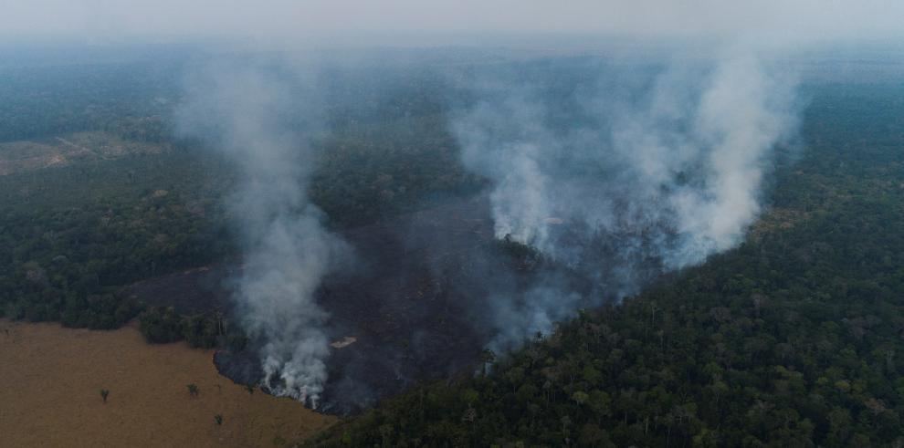 Los incendios en la Amazonía brasileña crecieron un 30 % en 2019