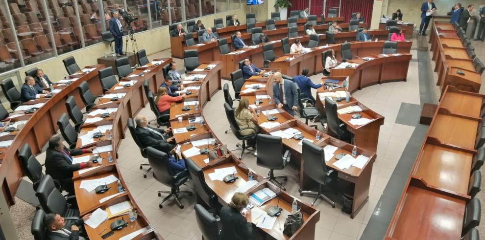 Pleno Asamblea 2 Gustavo