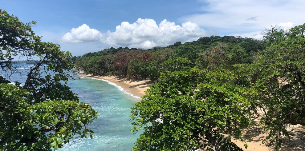 Punta Cauro