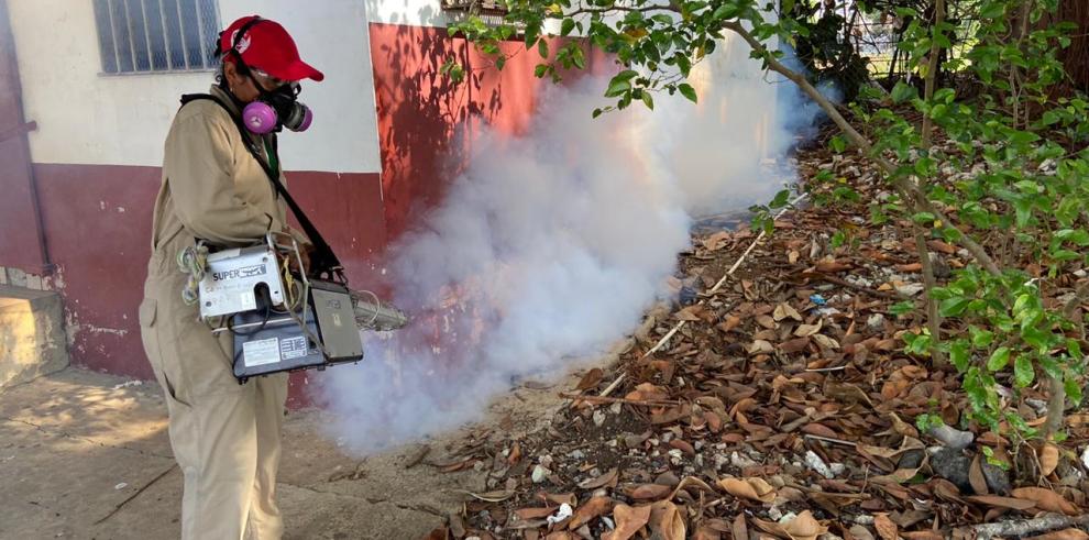Fumigación por dengue