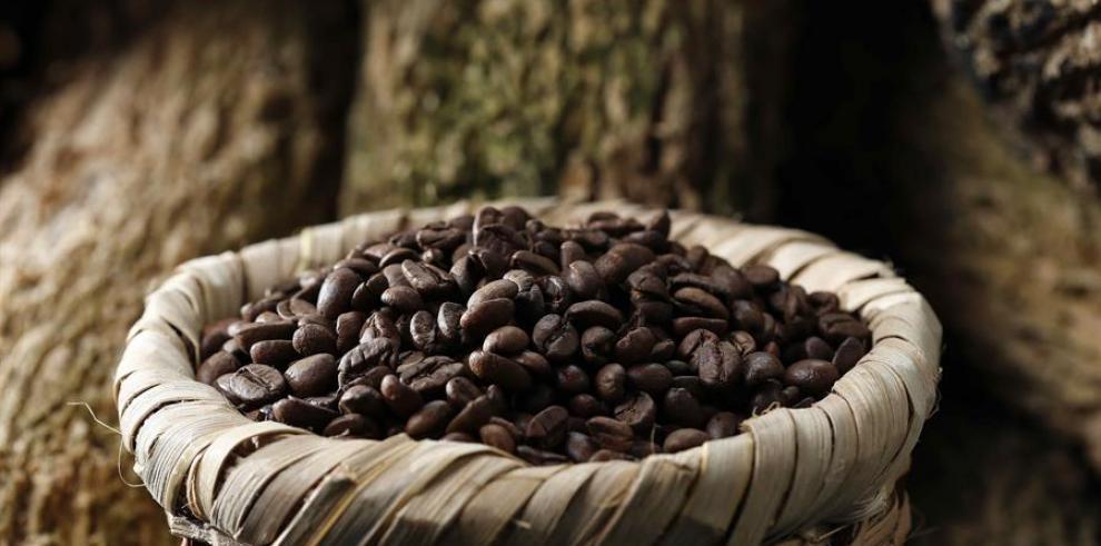 Granos de café en San José, Costa Rica.
