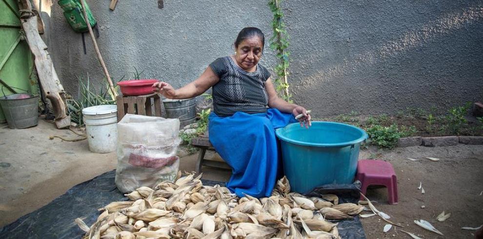 Mujeres rurales, el grupo con mayor brecha digital en Latinoamérica y Caribe