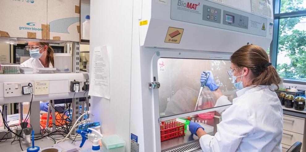 En la actualidad hay 260 proyectos para generar vacunas contra el SARS-CoV-2