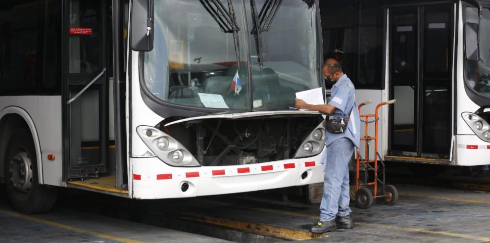 My Bus intervendrá el 70% de su flota tras diez años de funcionamiento