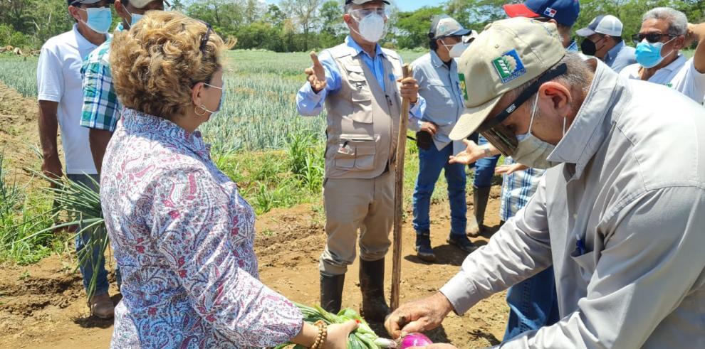 Autoridades del Mida y productores de cebolla