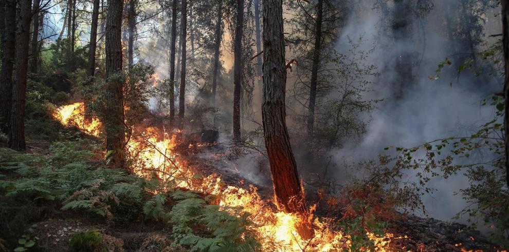 Los incendios afectan toda la costa mediterránea de Turquía