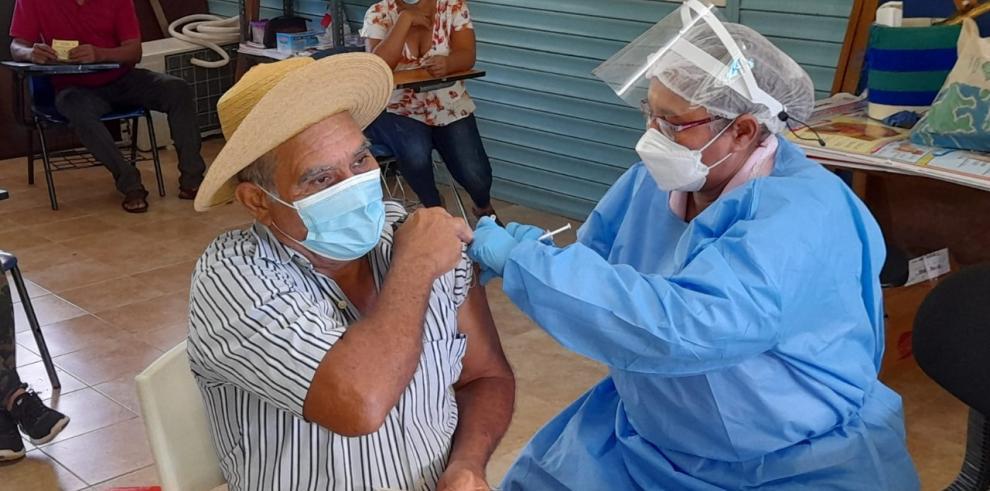 vacuna vieja