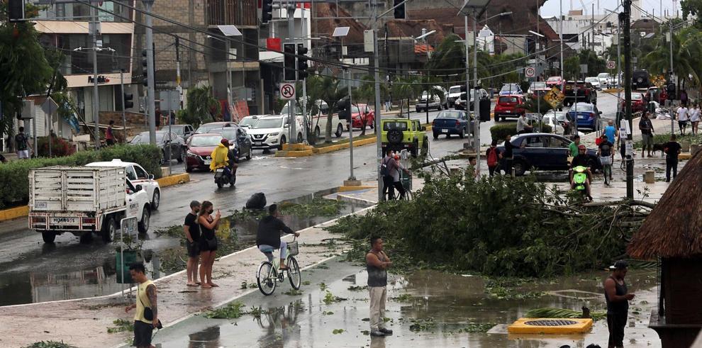 Vista de árboles caídos durante el paso del huracán Grace, en el centro del municipio de Tulum