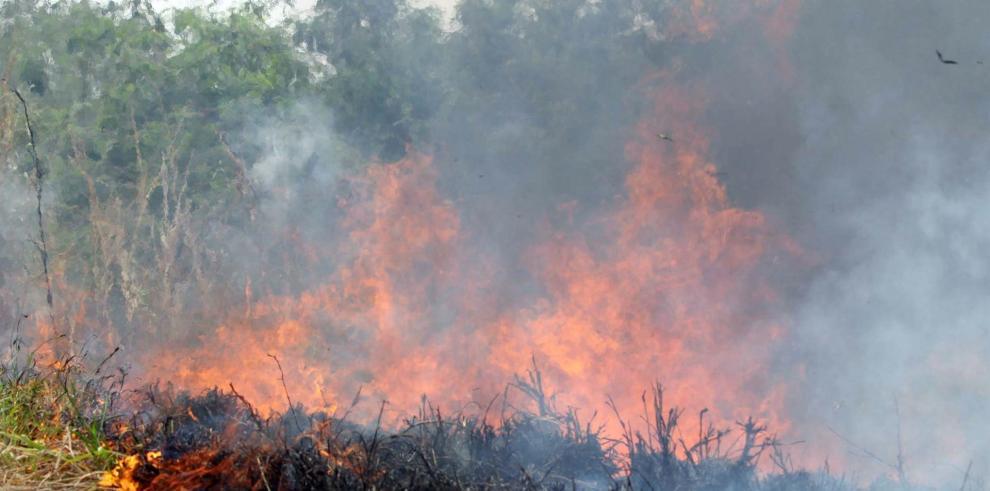 Según informó este miércoles el Gobierno de Córdoba en un comunicado, 470 brigadas están combatiendo los diferentes focos de fuego que estallaron el viernes pasado y están avanzando en los departamentos de Tulumba, Río Seco y Sobremonte, en el norte de la provincia.