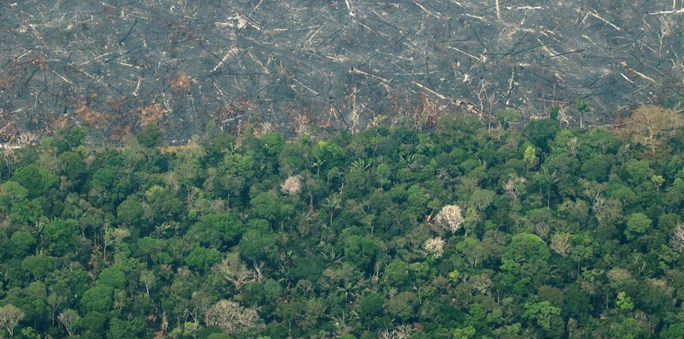 Vista aérea de áreas deforestadas de la selva amazónica de Porto Velho, Rondonia