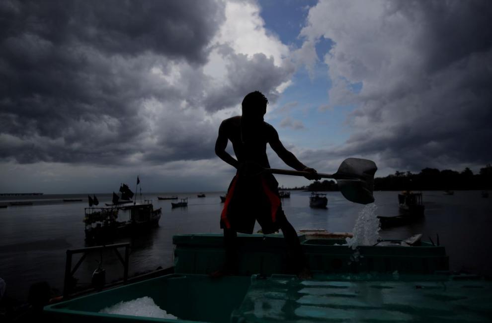 Pescadores desembarcan capturas de peces dorado en las costas del barrio del Chorrillo en la bahía de Panamá en el Océano Pacífico.