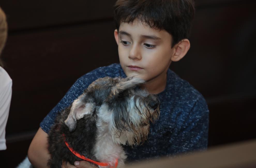 Mascotas reciben bendición