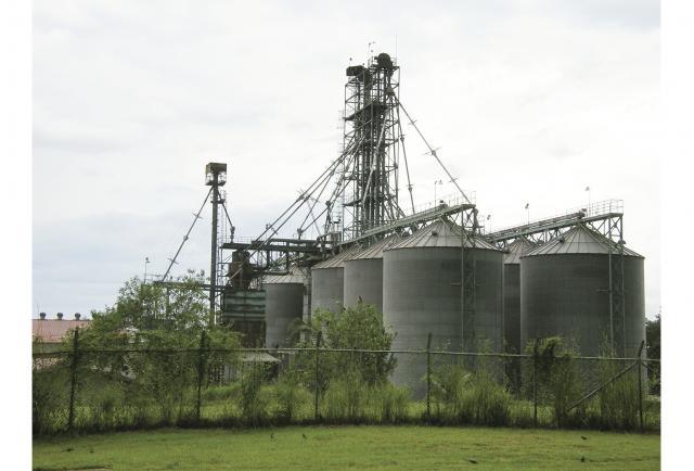 El IMA prevé construir dos silos, en Panamá Este y Tonosí - La Estrella de Panamá